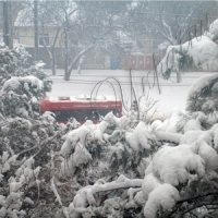 ...«Русская весна» обернулась зимою
