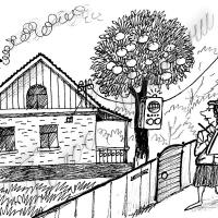 Лічильник електроенергії встановлювати  на вулиці не обов'язково