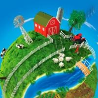Как реализовать урожай в постоянно усложняющихся условиях