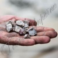 «Голову — в песок, или Почему депутаты областного совета уже третий месяц не могут создать коммунальное предприятие «Янтарь Волыни»?»