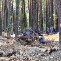 Голову в песок, или Почему депутаты областного совета уже третий месяц не могут создать коммунальное предприятие «Янтарь Волыни»?