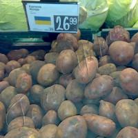 Картопля вродила ціною