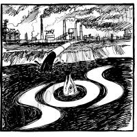 В реках не вода, а яд