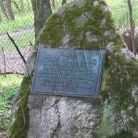 Нев'янучий гербарій Юзефа Пачоського