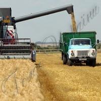 Перший мільйон тонн зерна зібрали з третини площ
