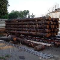 Суд конфіскував два вагони з лісом у дохід держави