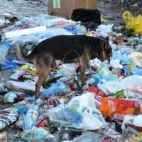 Один вихід - будувати сміттєпереробні заводи за межами міст і сіл