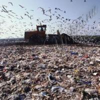 Врятують сміттєпереробні заводи
