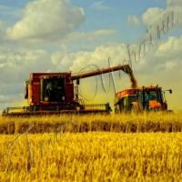 Другий мільйон тонн зерна - не останній