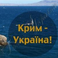 Токарєв у Києві не виступатиме