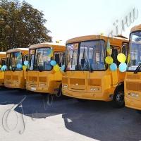 Для шкіл Кіровоградщини придбано 25 комфортабельних автобусів