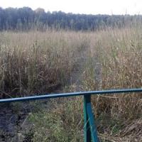 Высохло легендарное озеро Нечимное