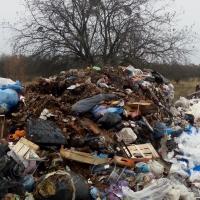 Чом зі Львова статечного… - сміттєпад знов?! Негречно