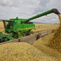 Рекордні крайові 5508000 тонн зерна!