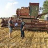 Обласний <<Урожай-2016>> з нив… нелегальної праці