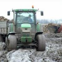 Чорні кагати на білих полях: втрати цукру очевидні, але незначні