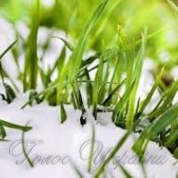 На Запоріжжі посіви озимих поки тривоги не викликають…