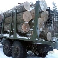 Отомстили за изъятую древесину