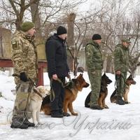 Хмельниччина: розкрити 700 злочинів допомогли… собаки
