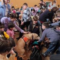 Як собаки дарують гарний настрій дітям
