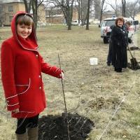 Садять дерева для нащадків