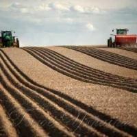 Оформлены новые аграрные расписки