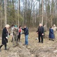 Закладуть новий ліс до спекотного травня