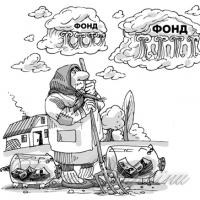 Накопичувальна пенсійна система: за і проти