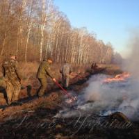 Лісова охорона посилила патрулювання, щоб уникнути самовільних підпалів