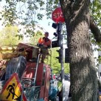 Четыре глаза для водителя,  или Новые светофоры для города, которые должны сохранить пешеходам и водителям жизнь