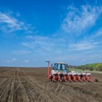 Дніпропетровські аграрії закінчують сіяти пізні зернові