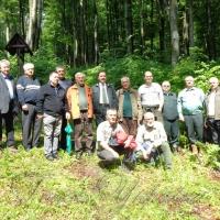 Лісівники Європи вивчали наш досвід