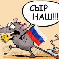 Фестиваль в окупованому Криму слід бойкотувати