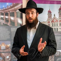 Запрошує фотовиставка європейських синагог