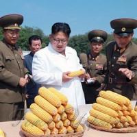 Кім Чен Ин: «А ця кукурудза... долетить до Гуам?»