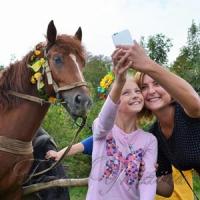 У Житомирі на території Національного агроекологічного університету відбулося «Свято українського коня»
