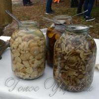 Феєрія грибів на святі селища