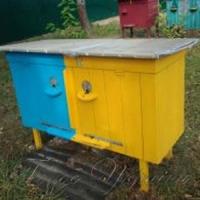Бджолярі повинні об'єднатися
