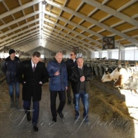 Харьковщина возрождает животноводство