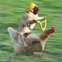 Собакизмы