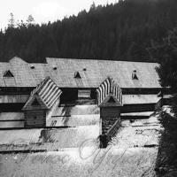 Єдиний у Європі Музей лісу і сплаву буде відновлено!