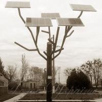 «Сонячне» дерево  заряджає мобілки
