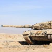 «Леопарди»  захистять від снарядів