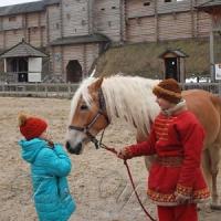 А на коня?..
