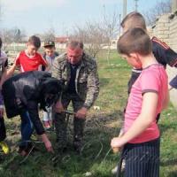 Лісівники та юні спортсмени посадили сотню ялинок