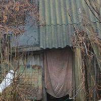Без Scopus: нужна ли Украине хуторянская наука?