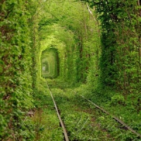 BBC News зняла сюжет про Тунель кохання