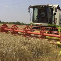 Одещина вже зібрала понад мільйон тонн зерна