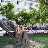 Рятують один із символів площі Героїв Майдану