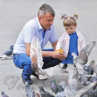 Дитинство і голуби...